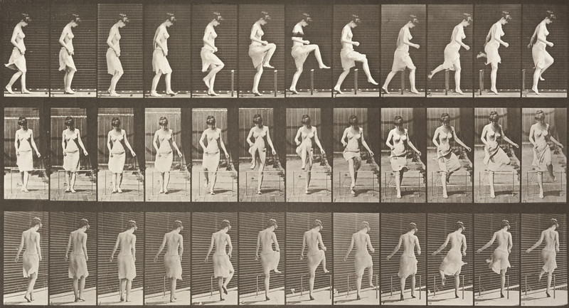 Semi-nude woman stepping over a fence (Animal Locomotion, 1887, plate 181)