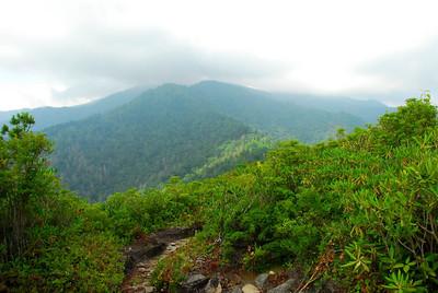 Brushy Mountain Trail