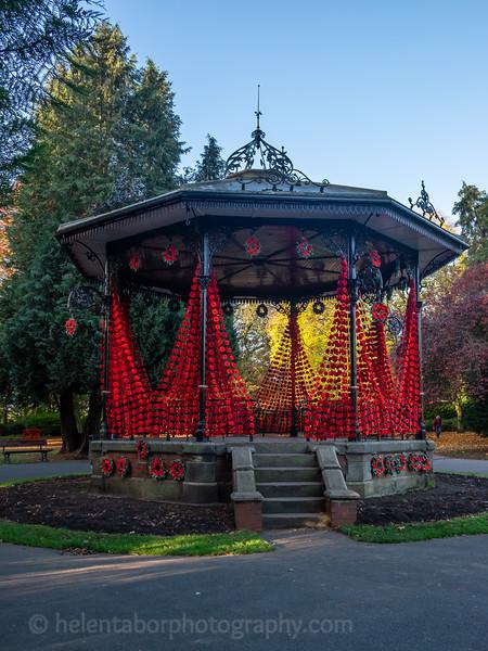 Spa Gardens poppies-34.jpg