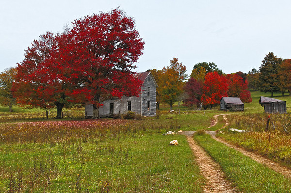 A Fall Trip Along Virginia Highway 8