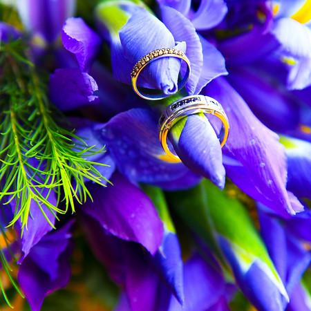 Andrea & Alex's Wedding   April 26, 2010