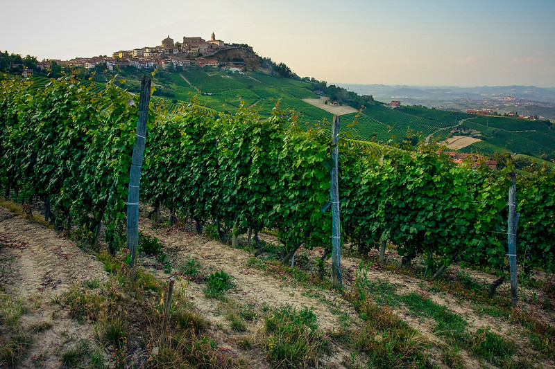 LANGHE_003_0710@ANDREAFEDERICIPHOTO.jpg