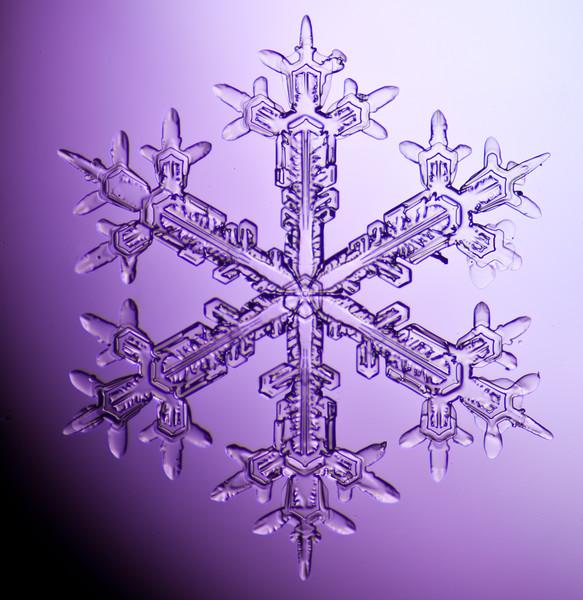 snowflake-3028-Edit.jpg