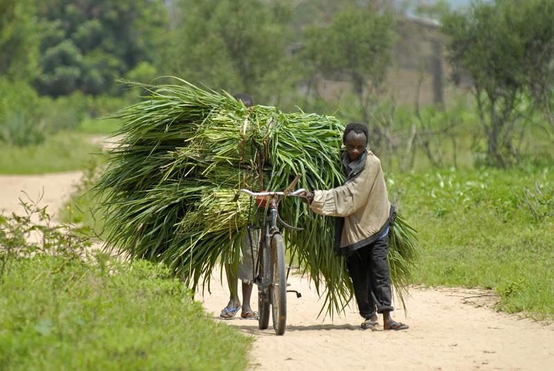 070104 3573 Burundi - Bujumbura - Neighbourhood near Peace Village _E _L ~E ~L.JPG