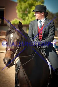 Equine Vignette Portraitures 110925