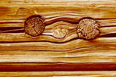 Pair of knotholes