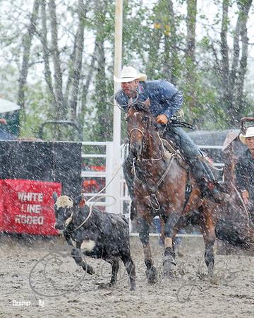 Hanover Ag Rodeo - Sunday
