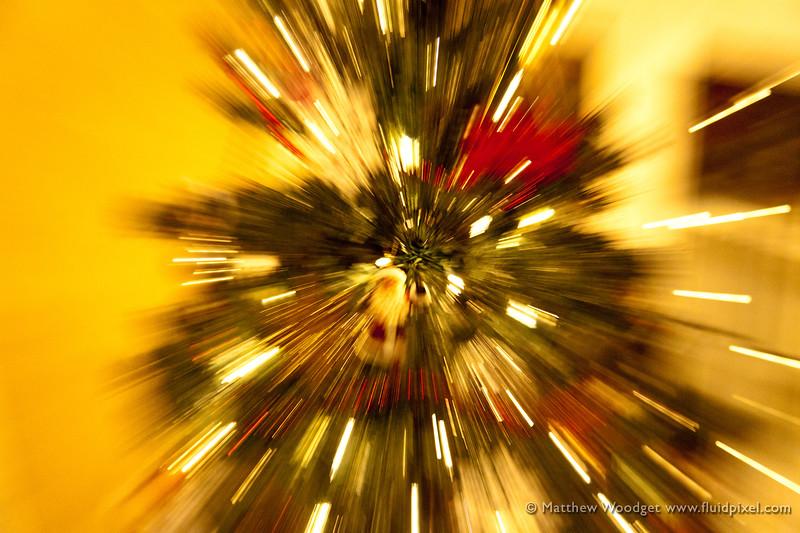 #345 - Tree Zoom