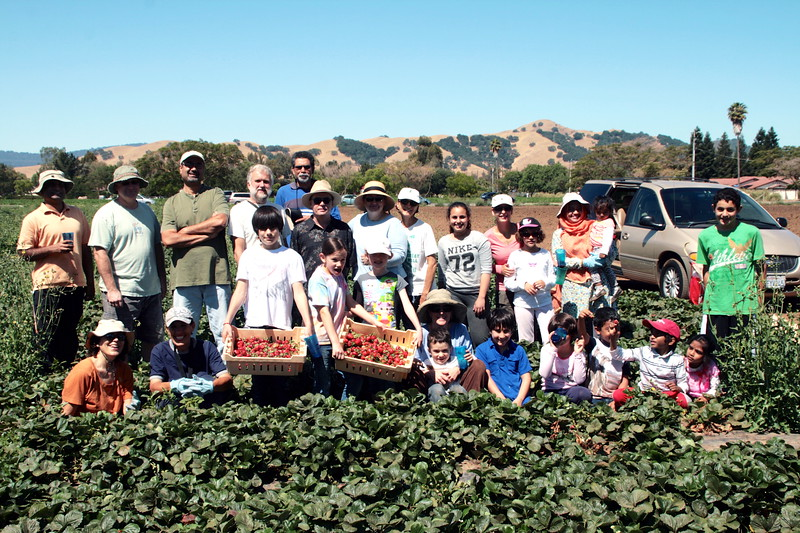 abrahamic-alliance-international-gilroy-2013-06-16_10-46-55-abrahamic-reunion-harvest-aziz-baameur.jpg