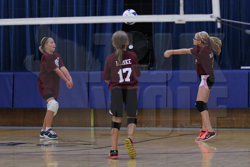 B2 Volleyball