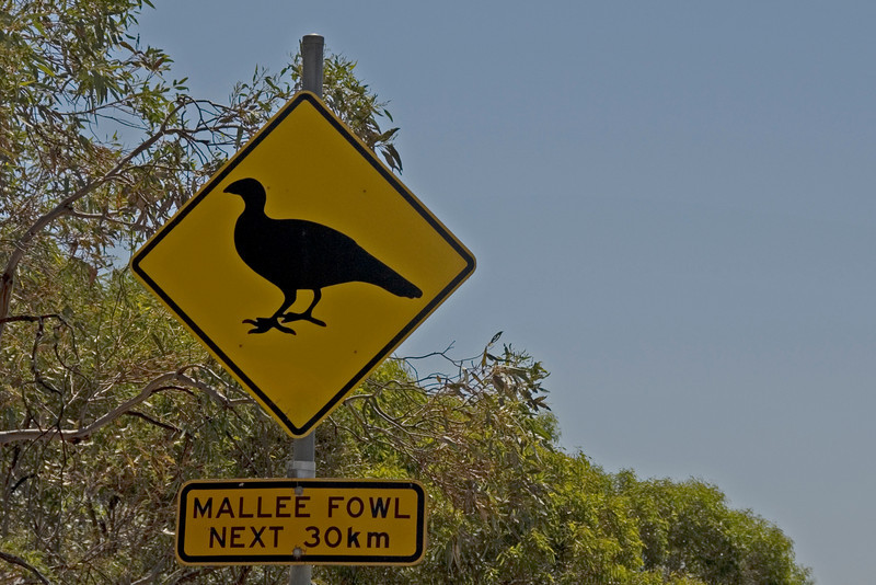 mallee fowl sign