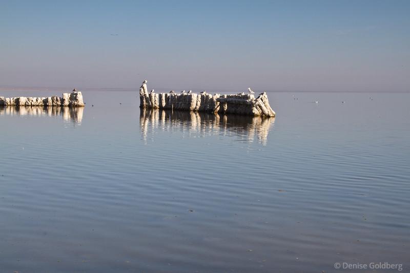 reflections, Salton Sea