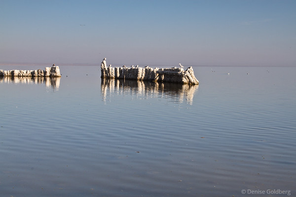 Around the Salton Sea