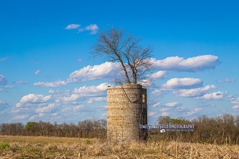 KC Landscape-24.jpg