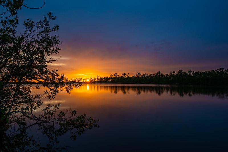 Everglades (1 of 60).jpg