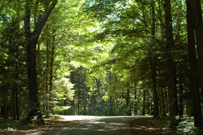Chestnut Ridge Park Orchard Park, New York