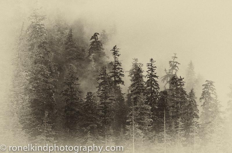 Alaska-0239.jpg