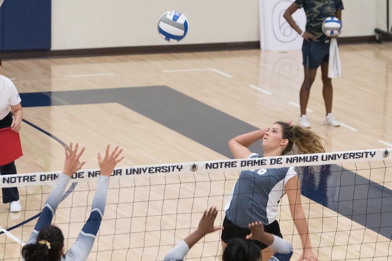 HPU Volleyball-92375.jpg
