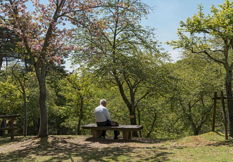Man on bench, Nara