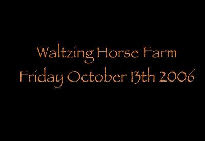EPN Fall Color Workshop-Catskills, Waltzing Horse Farm.