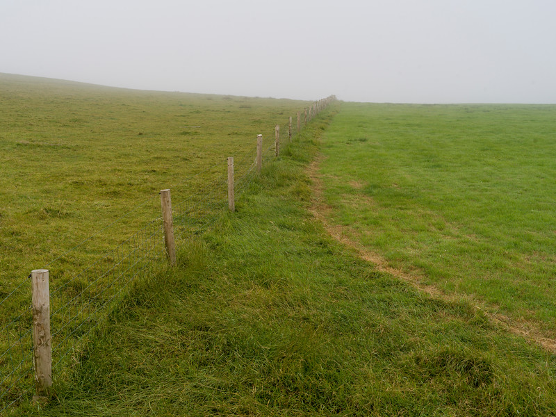 View of grassy landscape, Cliffs of Moher, Lahinch, County Clare, Ireland