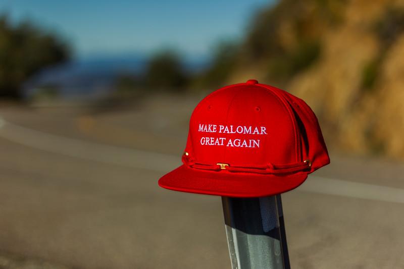 20201229 Palomar C2-288.jpg