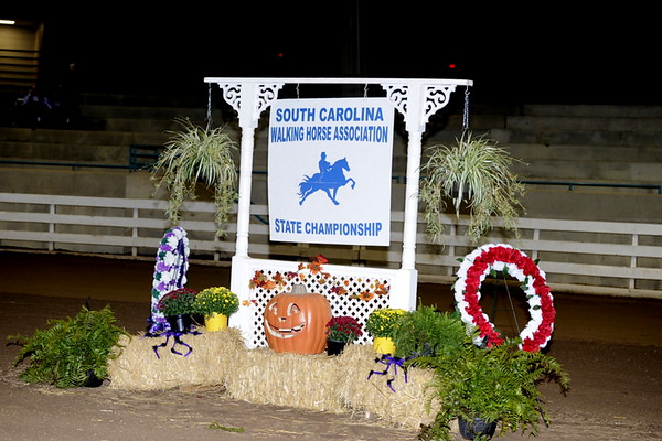 SOUTH CAROLINA WALKING HORSE CHAMPIONSHIP - CLEMSON SC