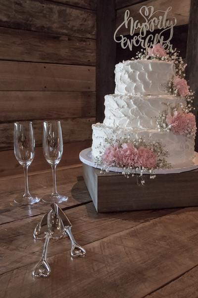 Houston Wedding Photography ~ Audrey and Cory-1116-3.jpg