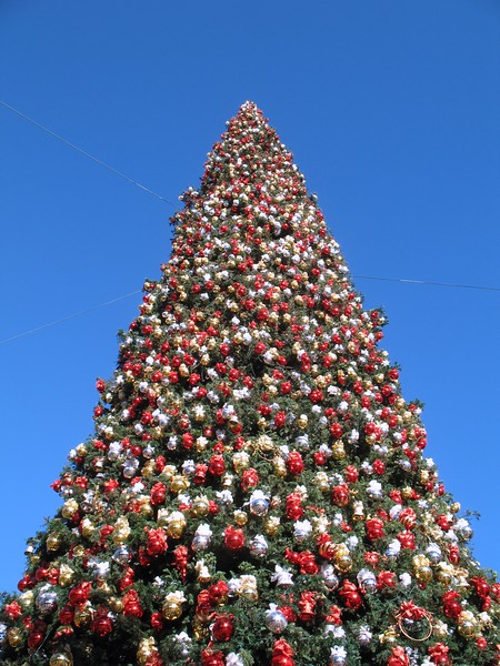 Fashion Island Christmas Tree