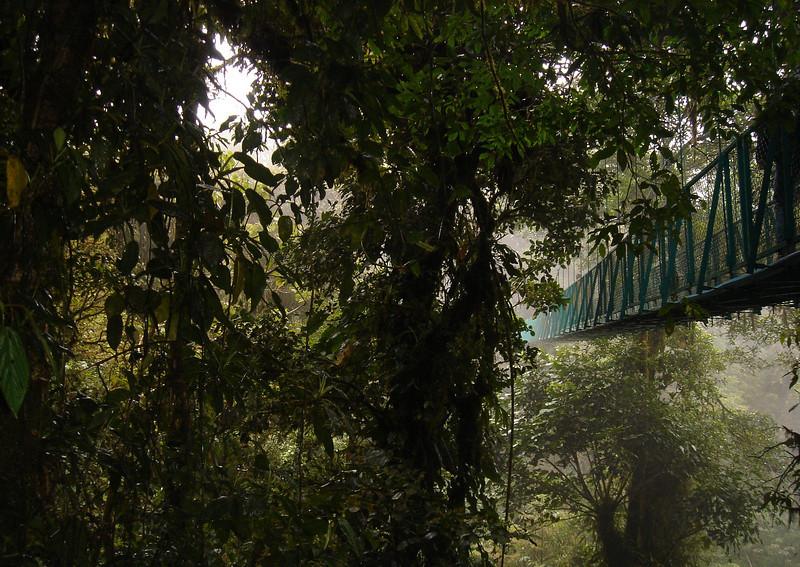 Santa Elena cloud forest, Costa Rica