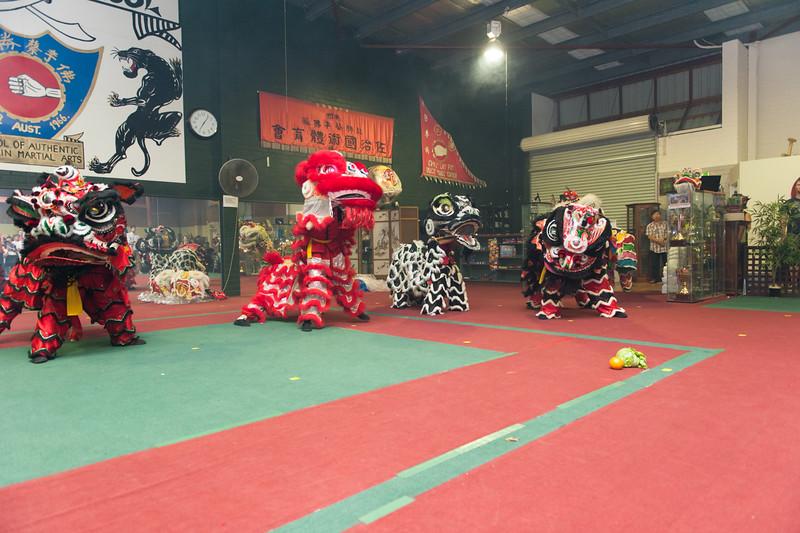 CNY 2015-16.jpg