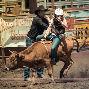Cowgirl Rides the Steer, 2012