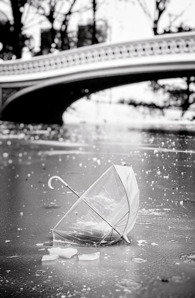 bow and umbrella