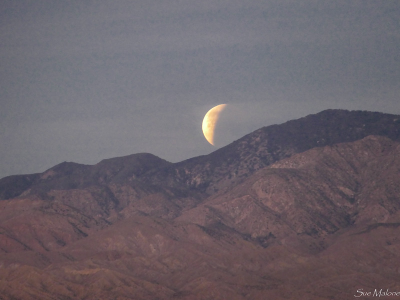 Eclipse at Catalina (14 of 25).jpg