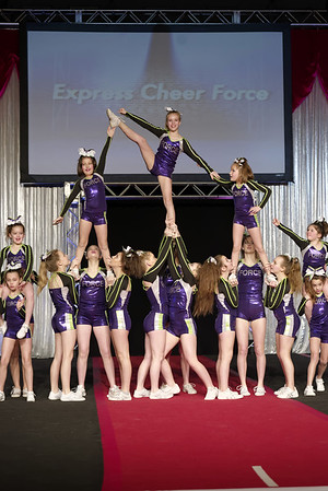 2015 Express Cheer Force