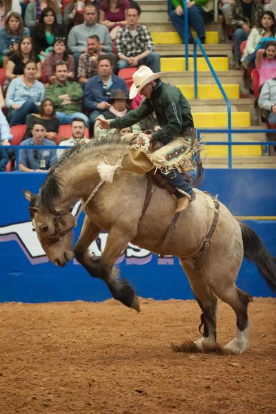 Austin_Rodeo-2779.jpg