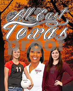 troups-ross-is-player-of-the-year-on-alleast-texas-volleyball-team