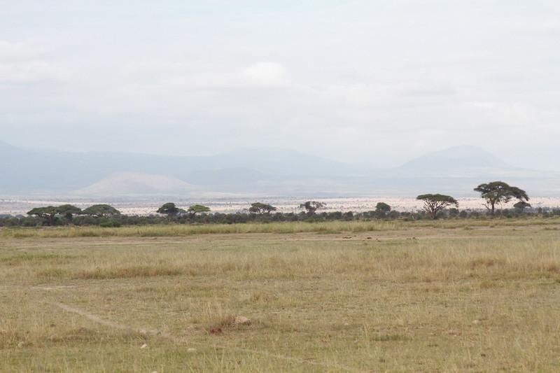 Kenya 2019 #2 574.JPG