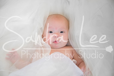 Paisley Jade in Studio Photo Session - Bay Harbor