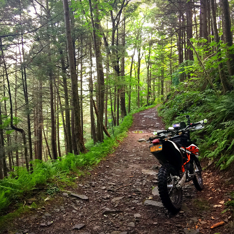 Fuzzygalore's KTM 690 Enduro on a trail