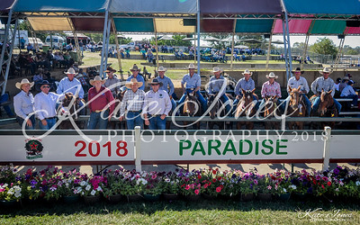 Paradise Lagoons 2018