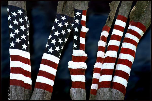 9/11 Memorial  Original Version