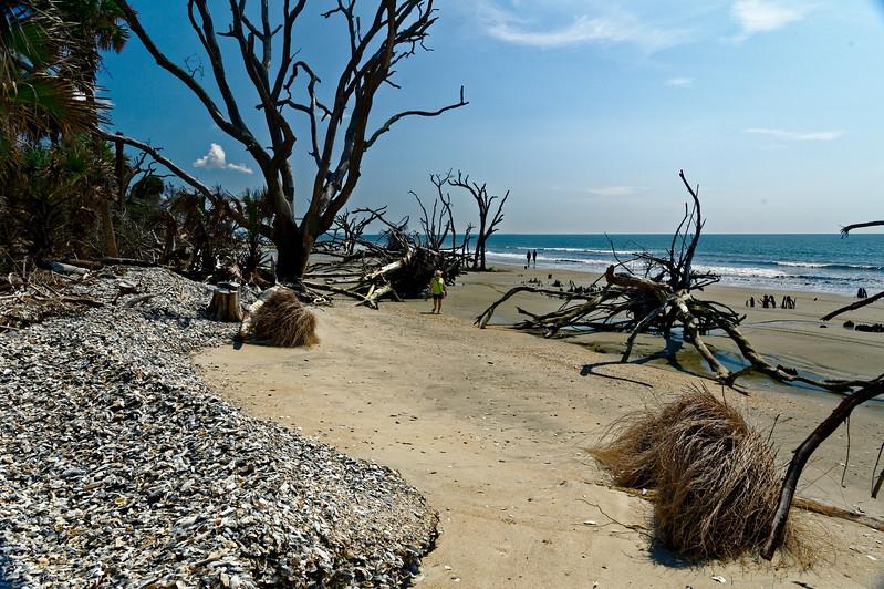 Botany Bay Boneyard