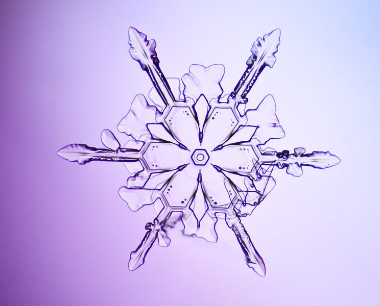 snowflake-3054-Edit.jpg