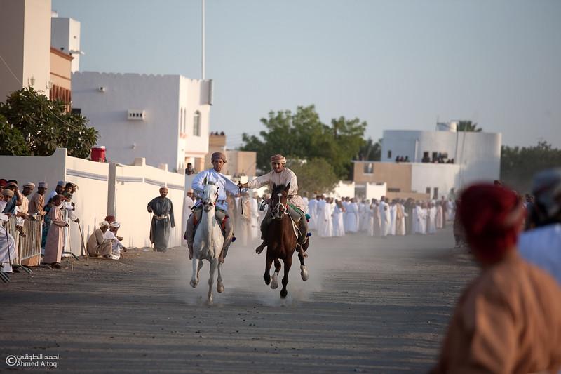 Horses Race  (3).jpg