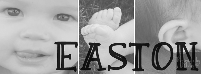 easton facebook cover.jpg