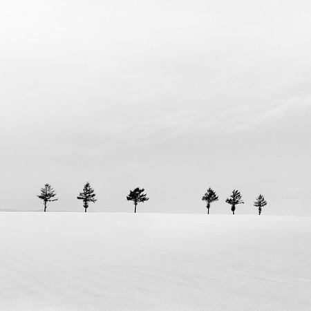 Hokkaido (snowscape), Dec 2012