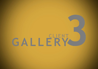 Client Gallery 3