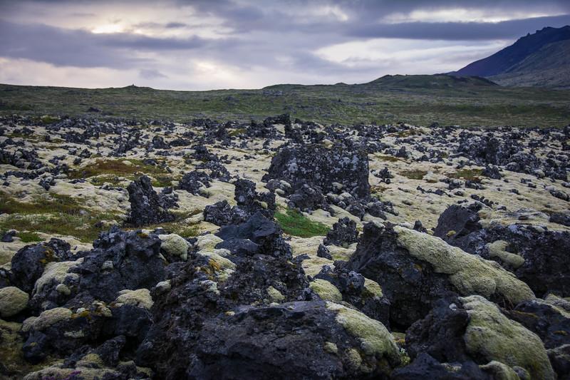 West-Iceland-96.jpg