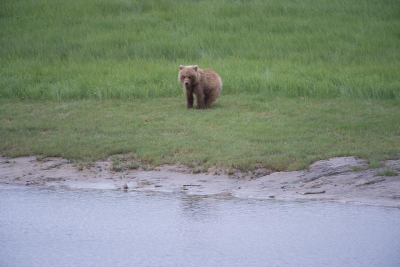 Alaska-9642.jpg